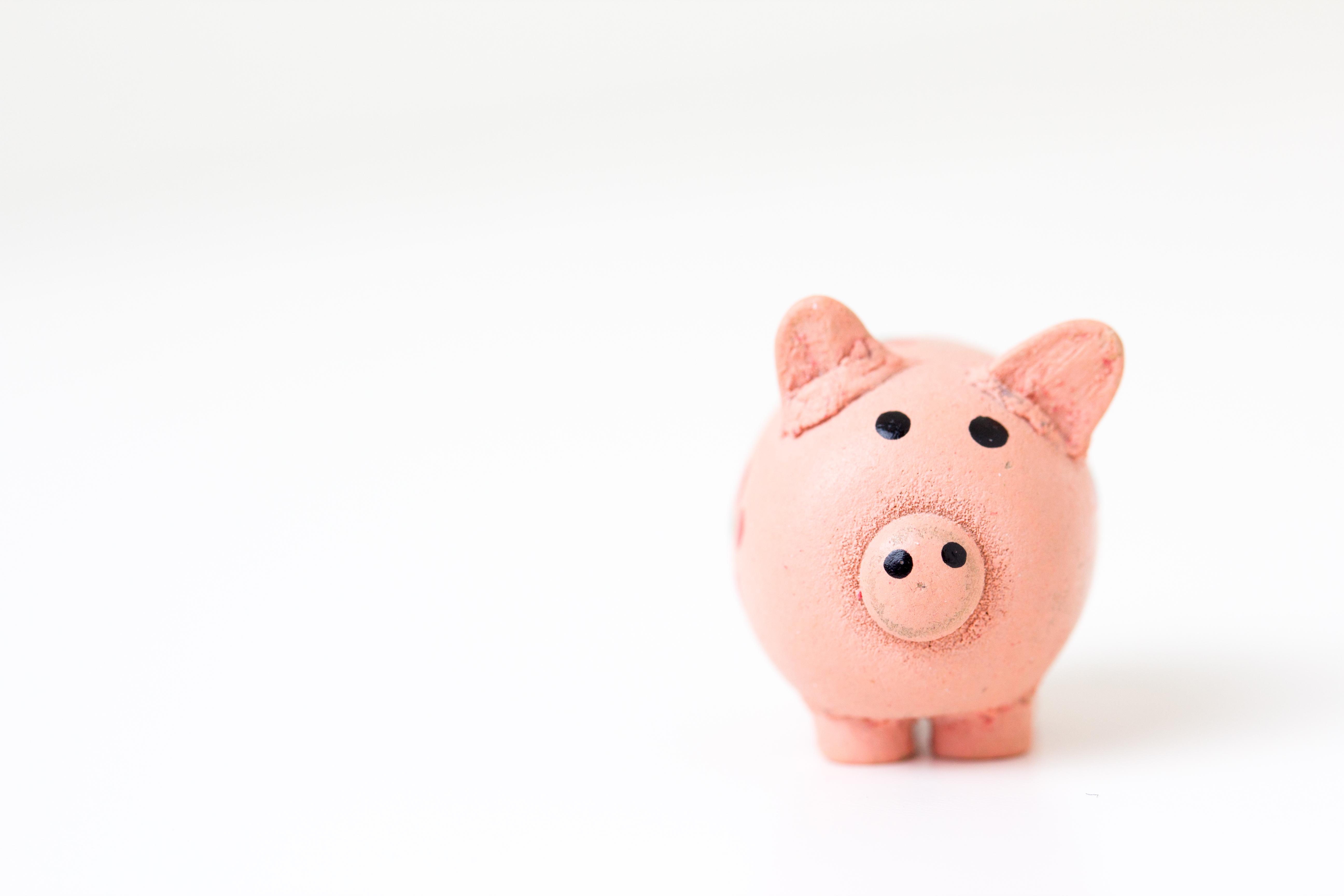 Geld sparen durch Paleo Meal Prep